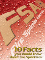 10 Facts Flyer